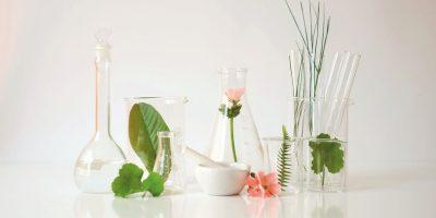 Purificare gli ambienti di casa e donare benessere in modo naturale con gli oli essenziali