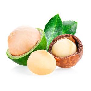 Macadamia (Olio)